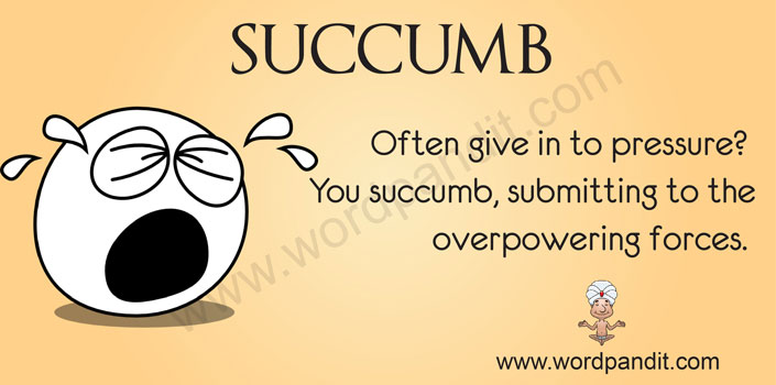 picture vocabulary for succumb Someone Writing