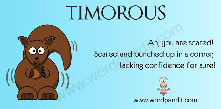 Picture for Timorous